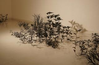 Asako Tanaka Tachibana Gallery
