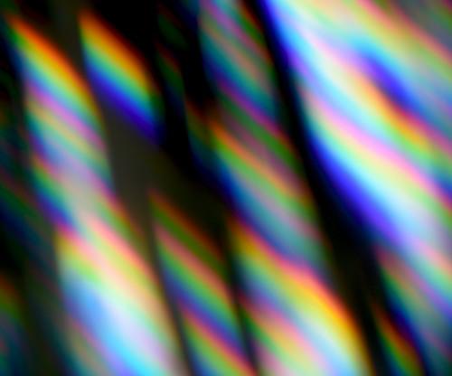 千葉麻十佳「dappled sunlight」 橘画廊